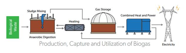 anaerobic digestion biogas flow
